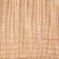 楓木 表面紋路