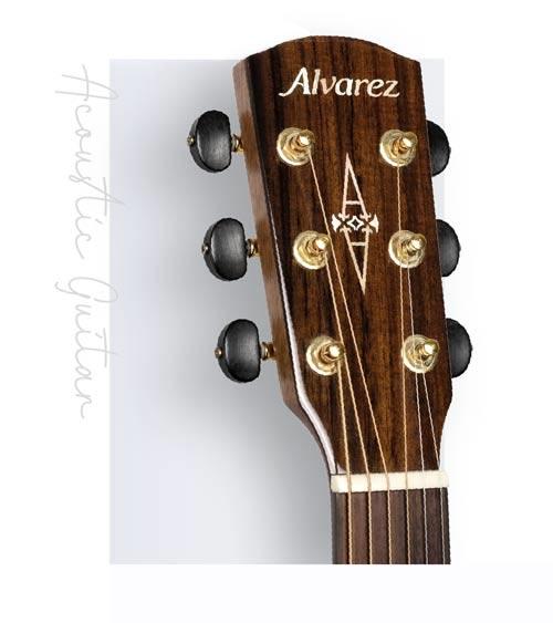 Alvarez 美國四大品牌之一