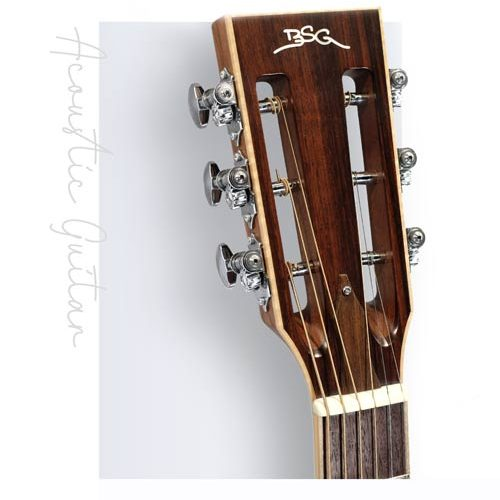 BSG 頂級捷克手工吉他