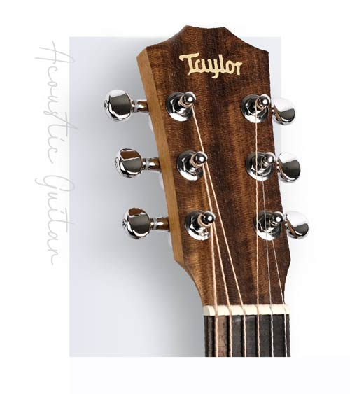 Taylor 美國木吉他