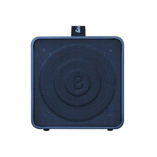 Belcat Busker Box 木吉他音箱 (4)