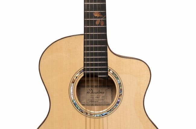 Dowina Guitars Master Series - Dub