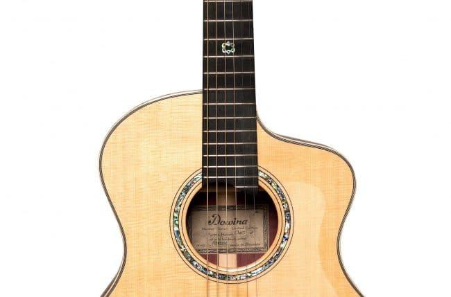 Dowina Guitars Master-Series-Purple-Heart