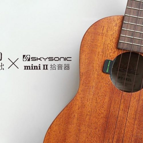 Pukana La PT-M2L + Skysonic Mini II (2)