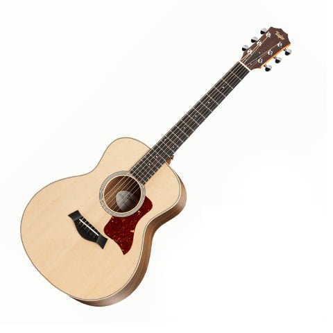 Taylor gs mini walnnt-1